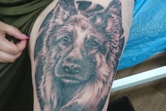 Hunde Portrait Tattoo von Good Times Tattoo Philippsthal