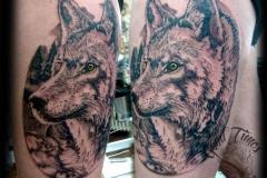 Wolf Portrait Tattoo von Good Times Tattoo Philippsthal